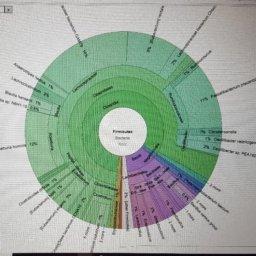 CIERTAS CONFUSIONES HABITUALES EN EL CONCEPTO DE DISBIOSIS UMEBIR Unidad de Medicina Bioregenerativa
