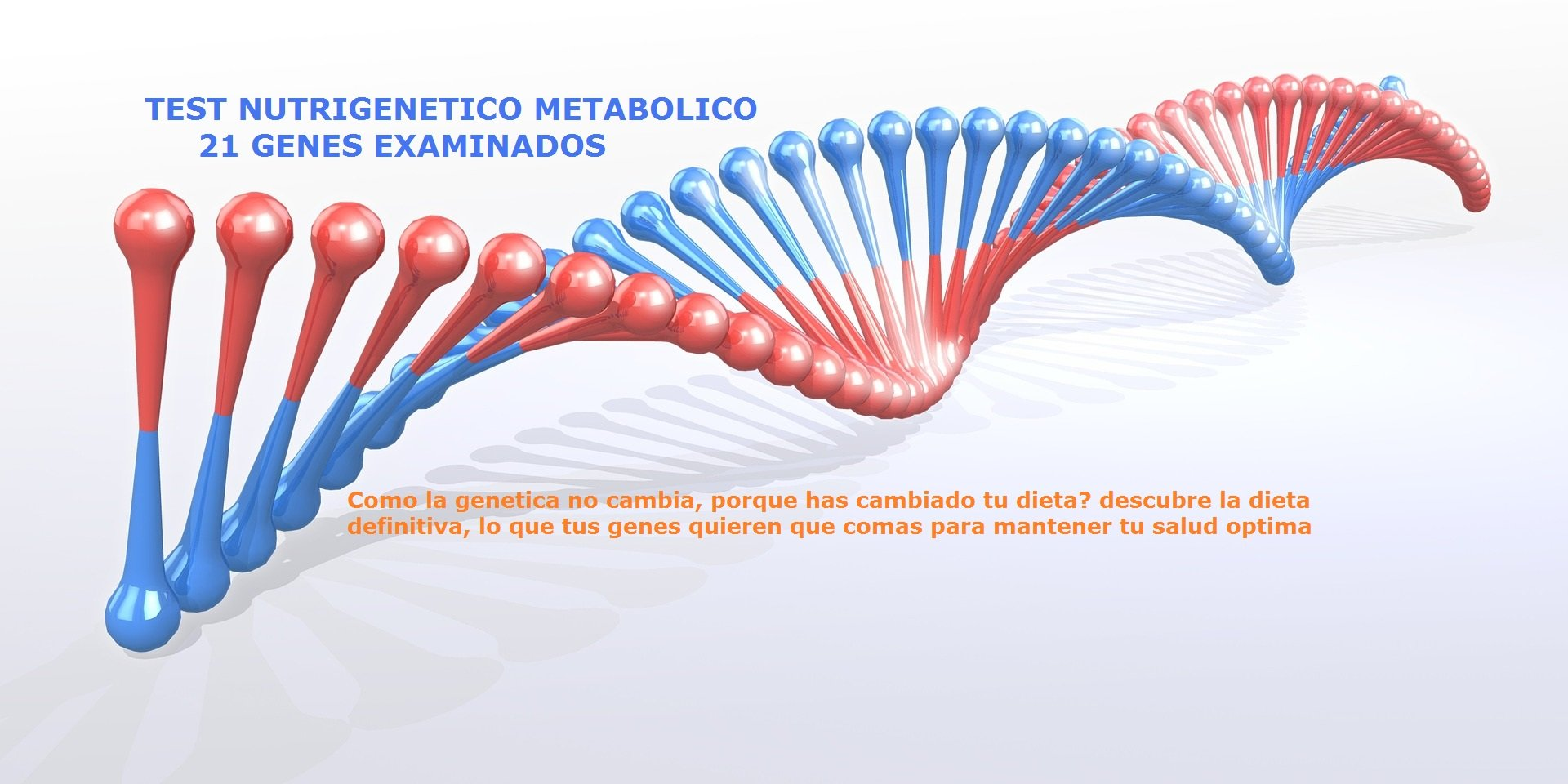 génesis protocolo de salud puro diabetes dieta
