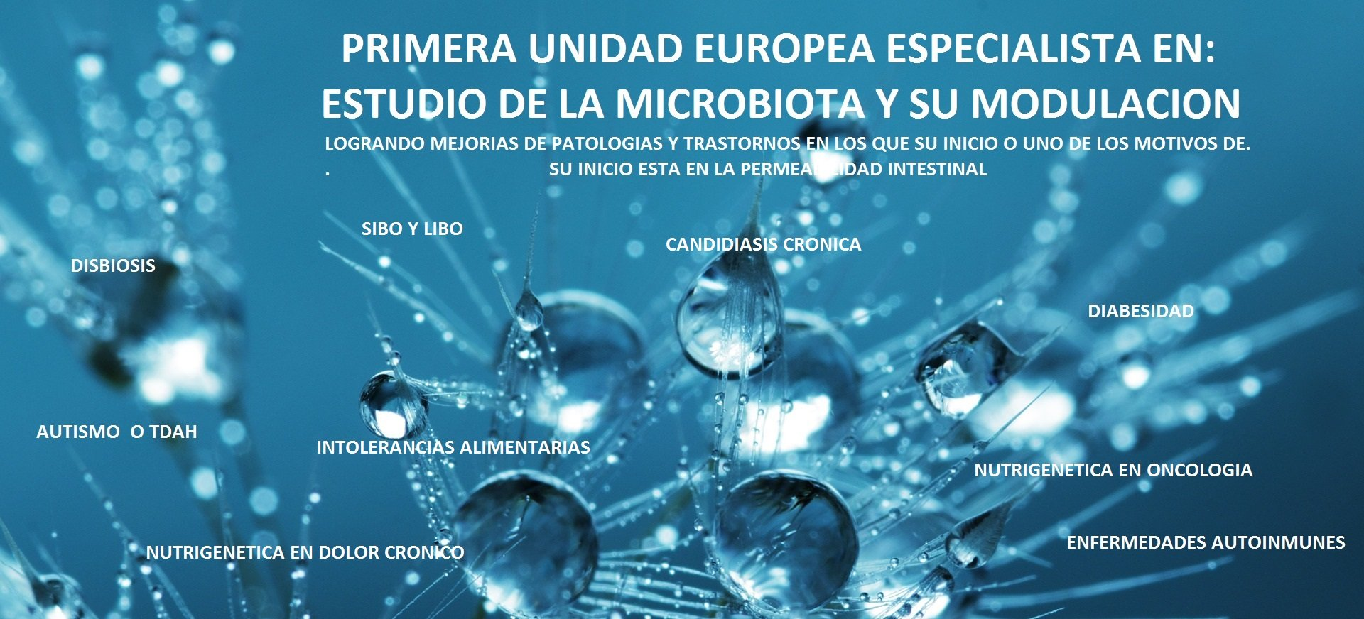 Intolerancia alimentaria UMEBIR Unidad de Medicina Bioregenerativa