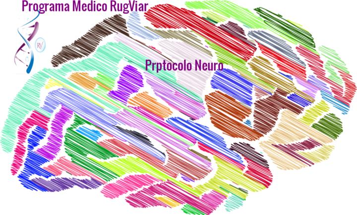 neuroautismo